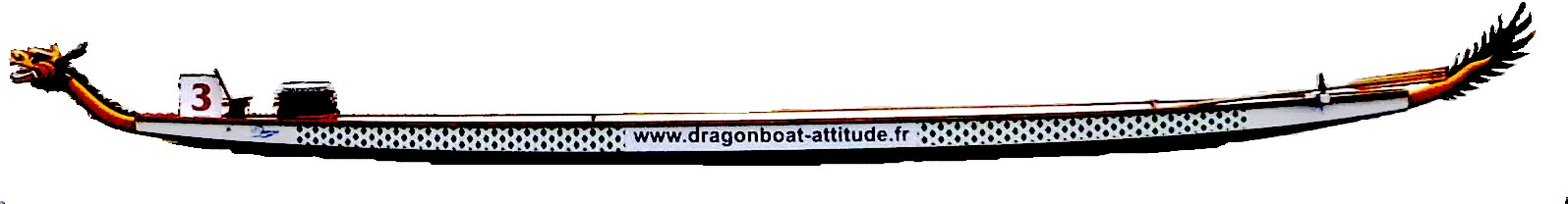 DRAGON BOAT SWIFT